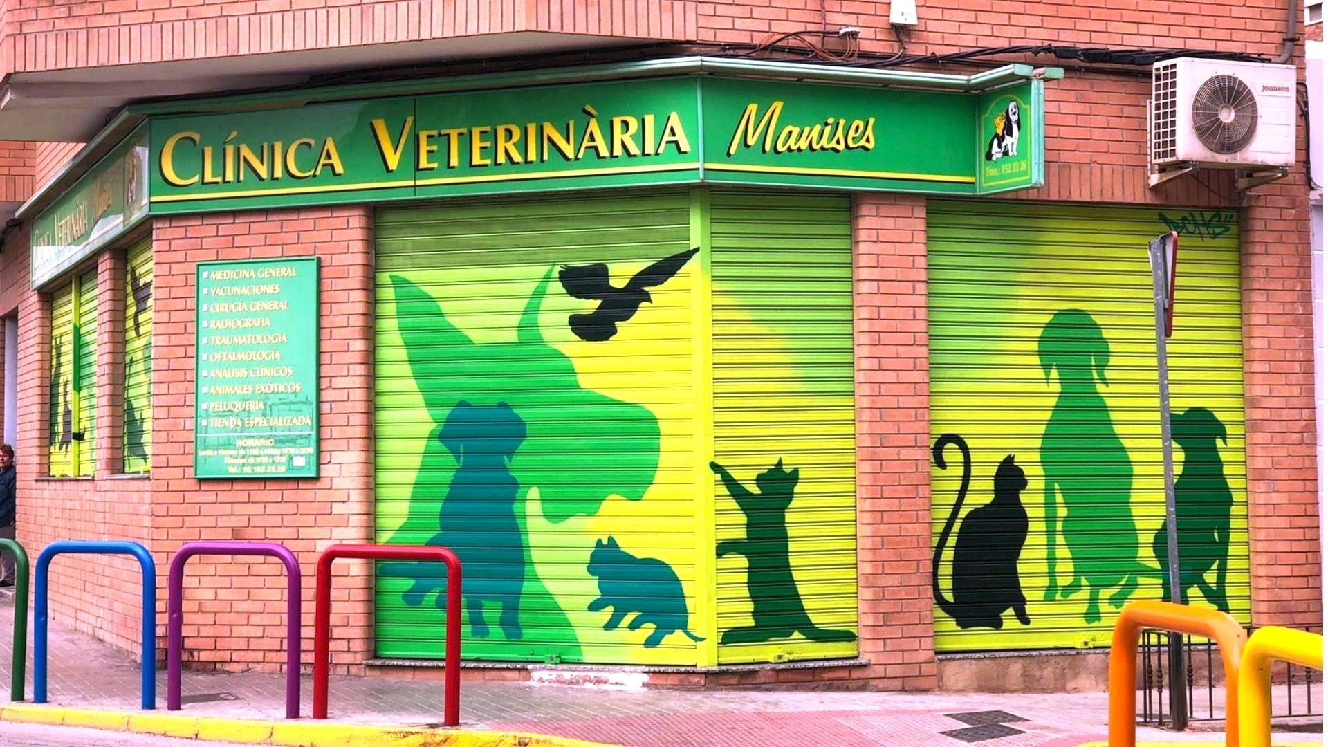 Clínica veterinaria en Manises