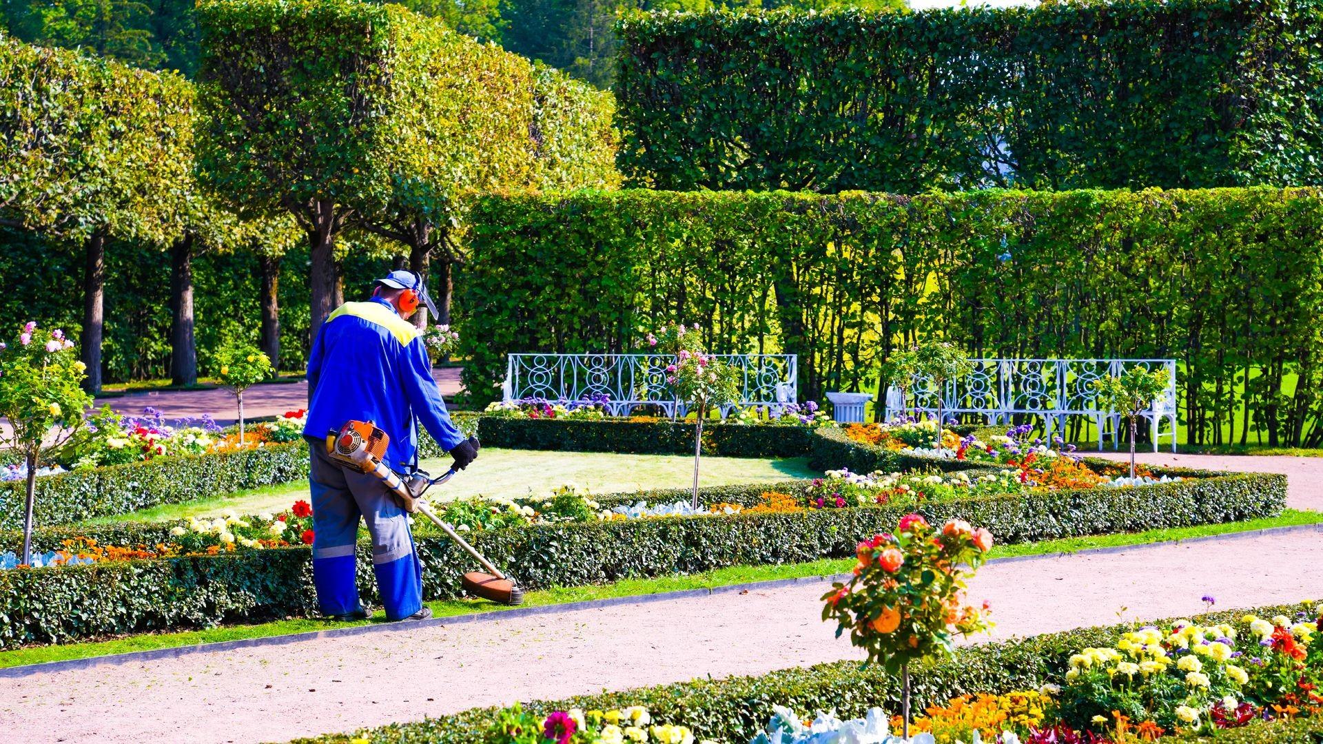 Mantenimento de jardines en Barcelona