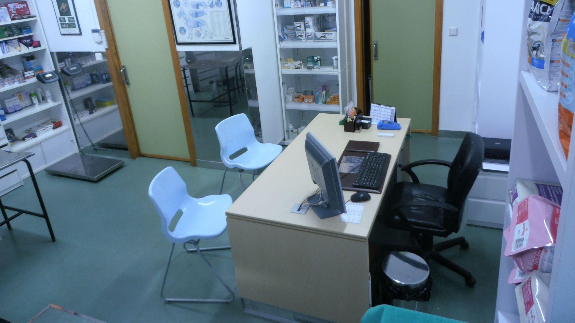 Clínica veterinaria en Valencia