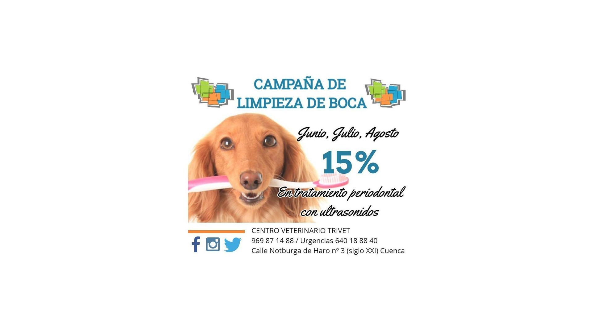 Hospital veterinario en Cuenca