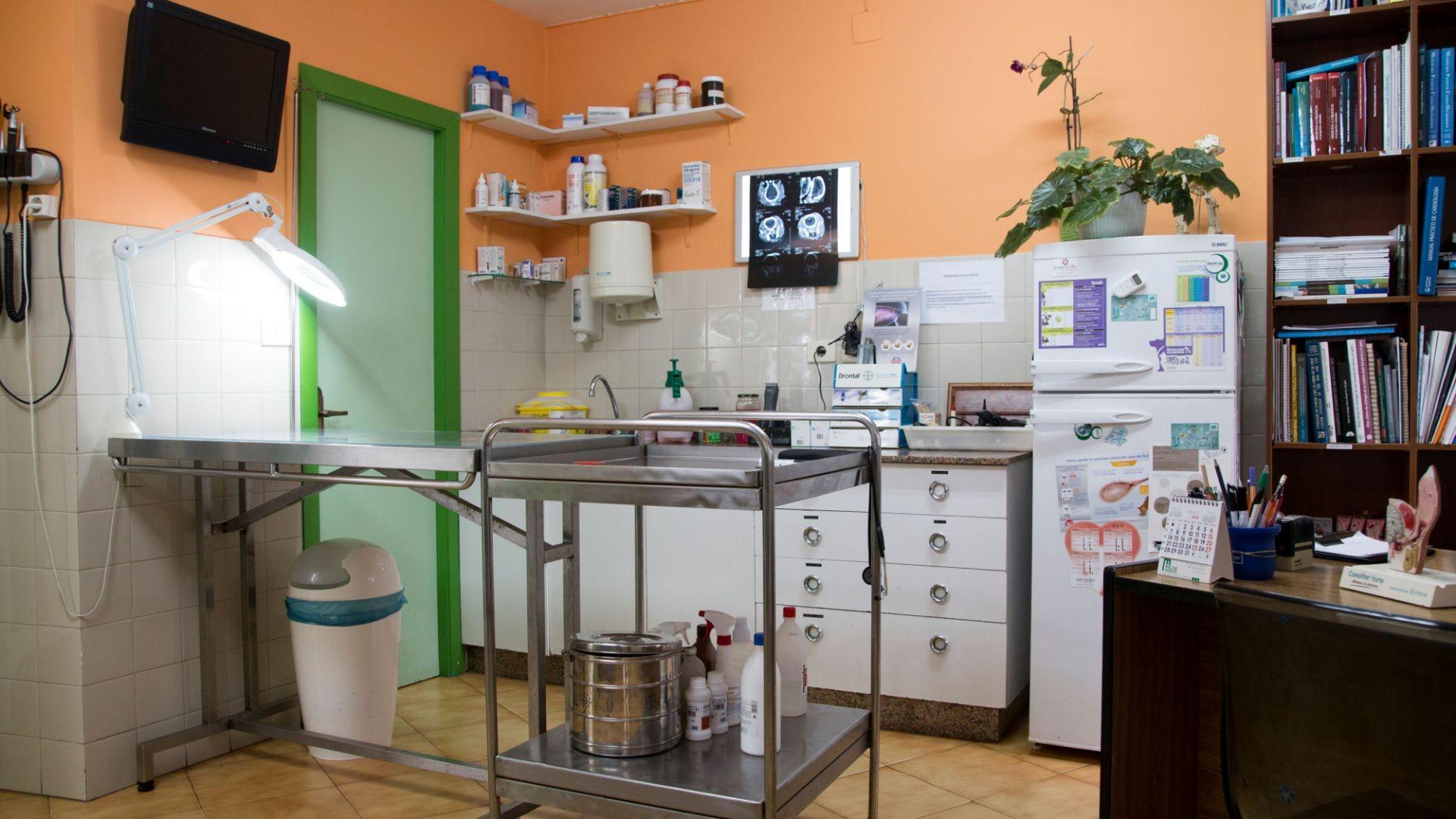 Veterinarios en Vilanova