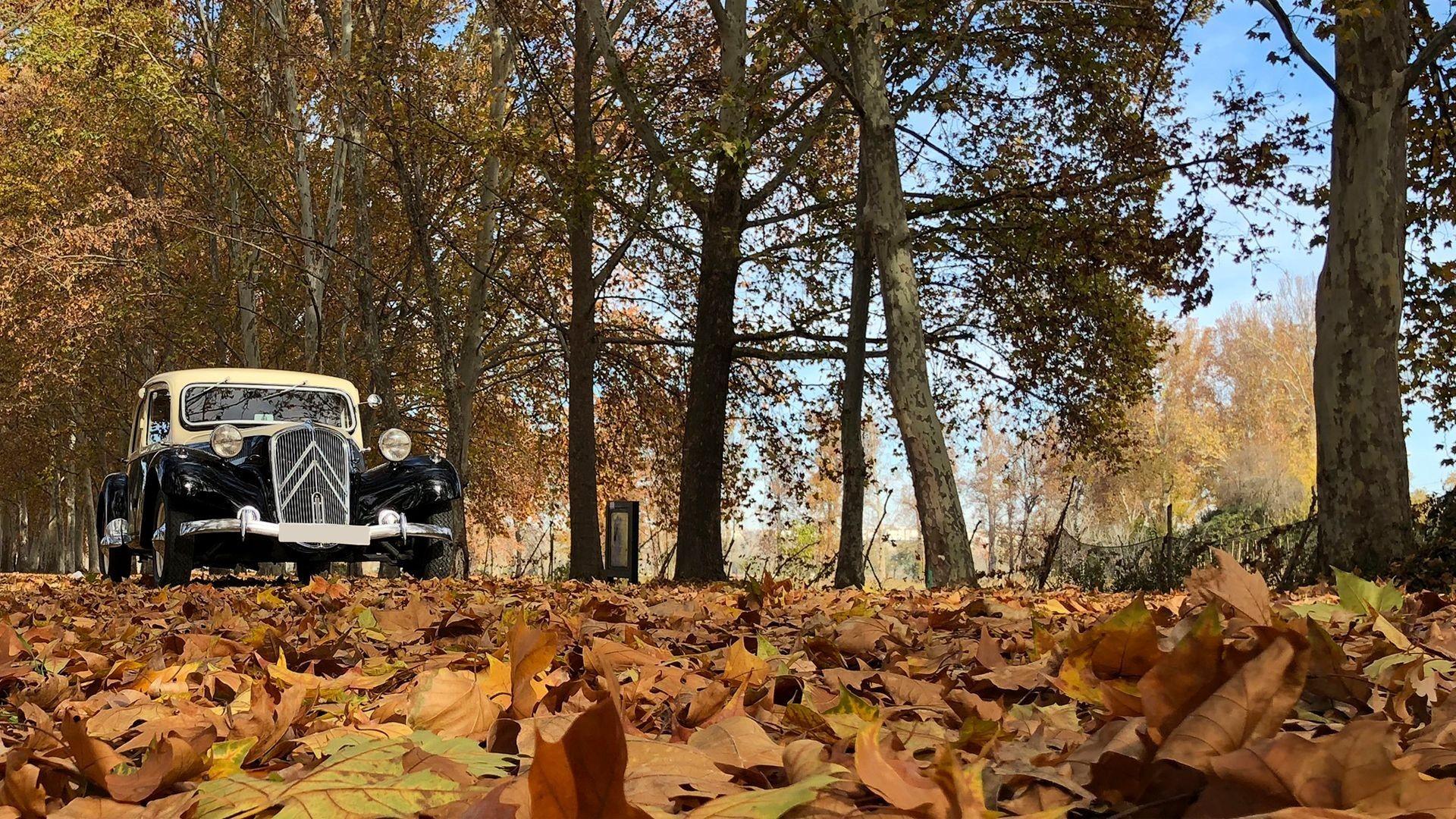 Alquiler de vehículos clásicos para bodas y eventos en Getafe