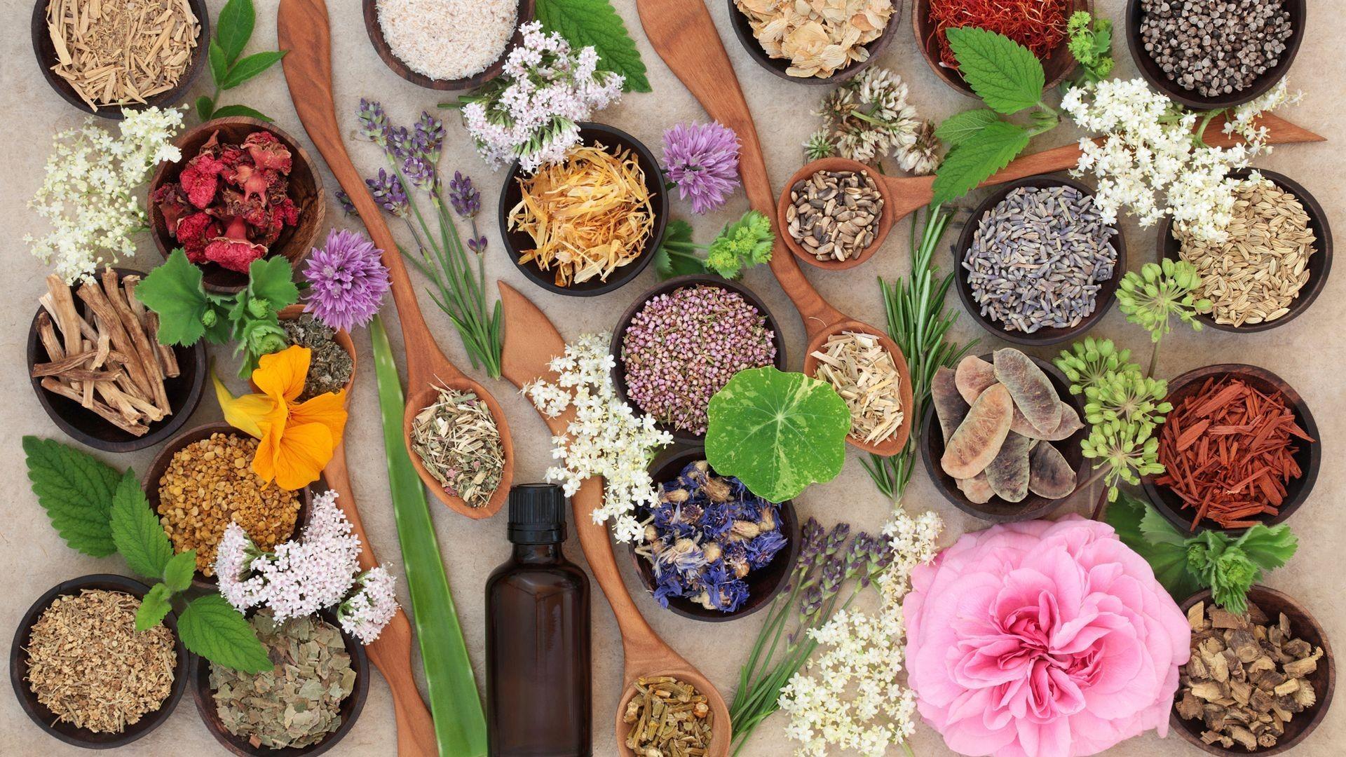 hierbas medicinales Terrassa
