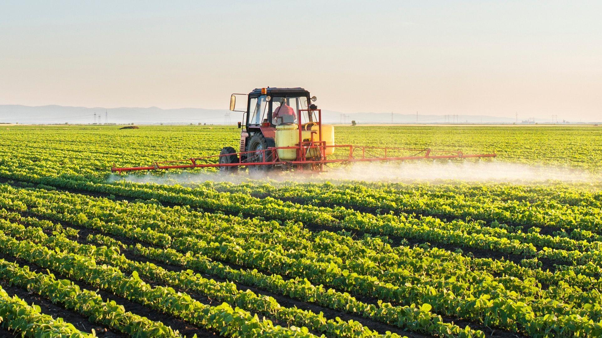 Venta de suministros agrícolas en El Ejido