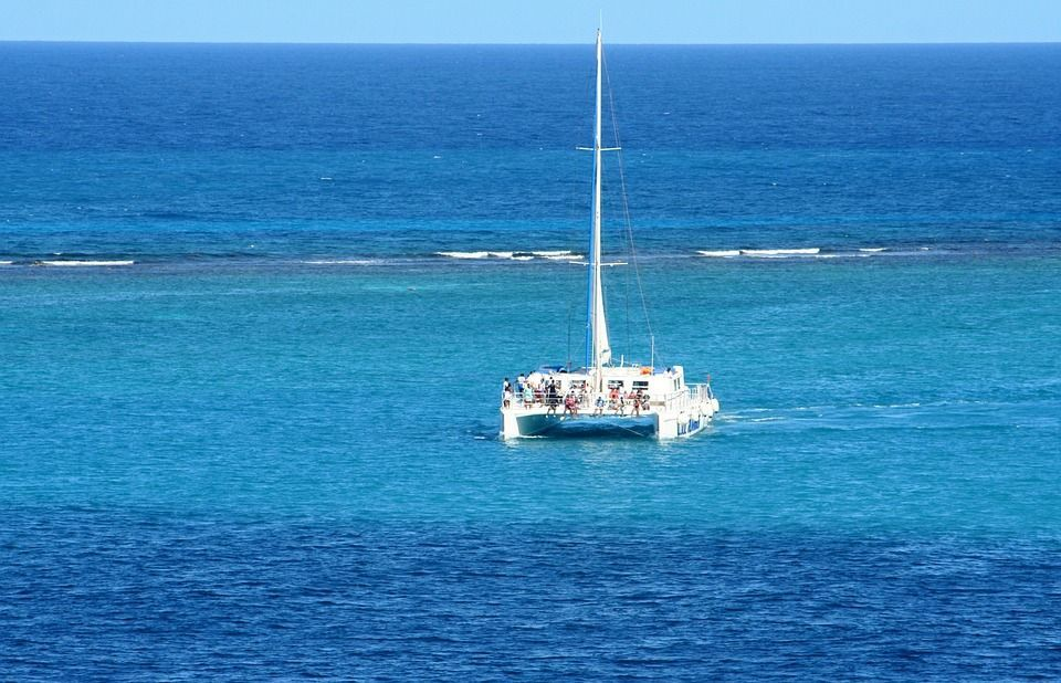 Catamarán excursión Delfín Playa: Excursiones y actividades de Rayco Tours