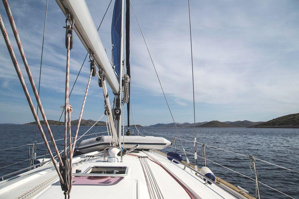 Dolphin Search Trip (Barco de búsqueda de delfines): Excursiones y actividades de Rayco Tours