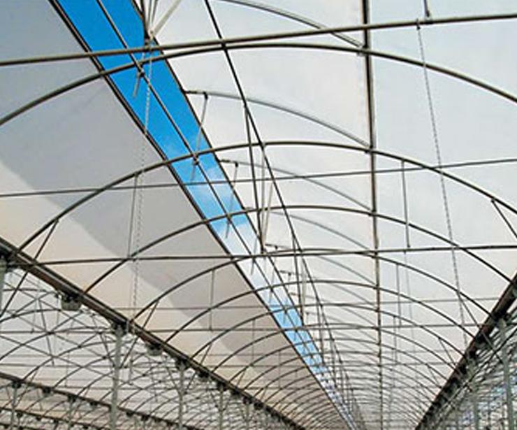 Interior de invernaderos