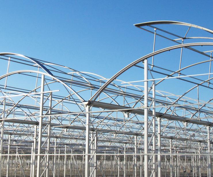 Foto 10 de Fabricación y creación de proyectos integrales para la agricultura protegida en Murcia | Global Invernaderos Greenhouse