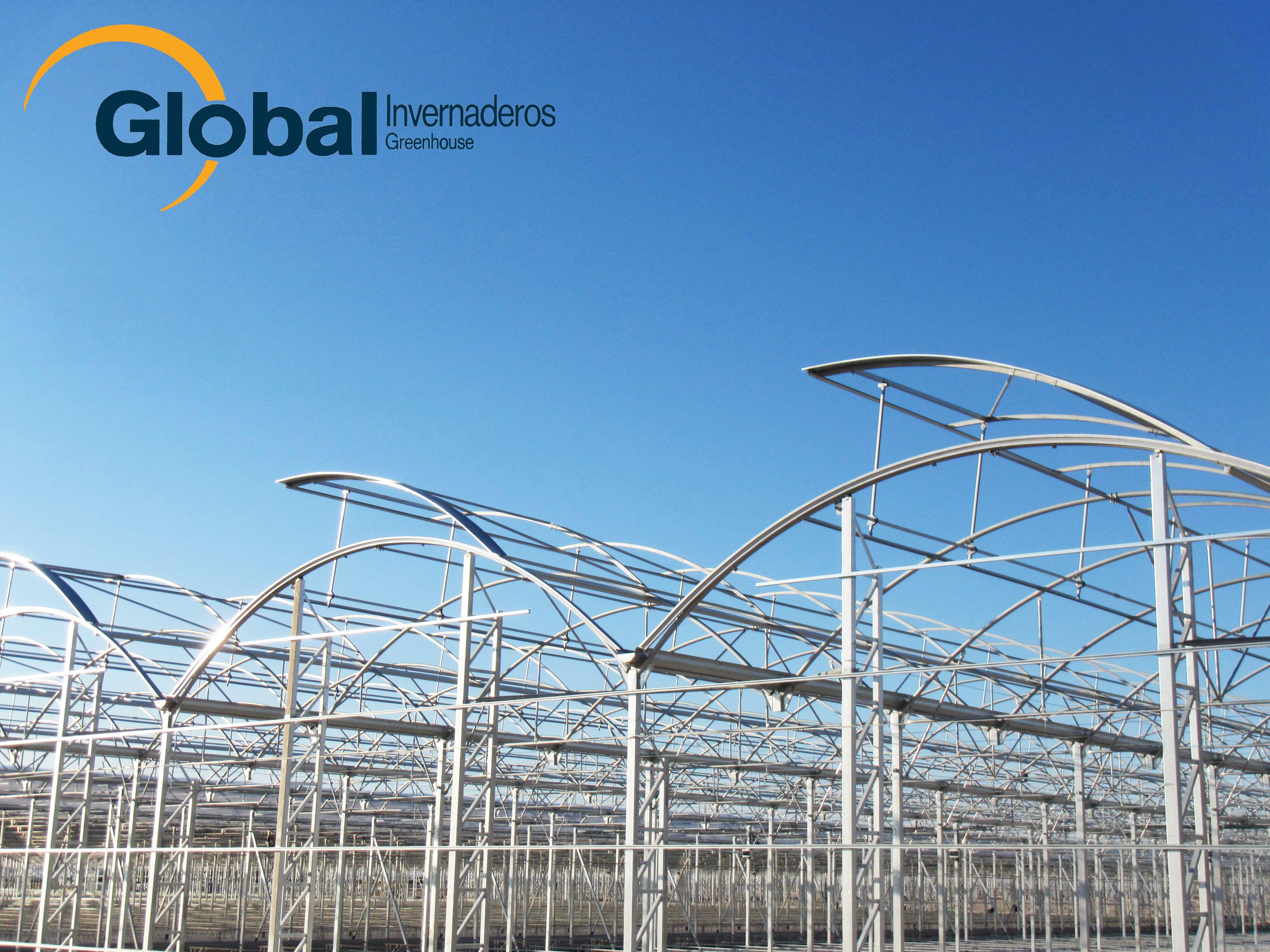 Invernaderos: Servicios de Global Invernaderos Greenhouse