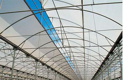 Equipamiento y montaje: Servicios de Global Invernaderos Greenhouse