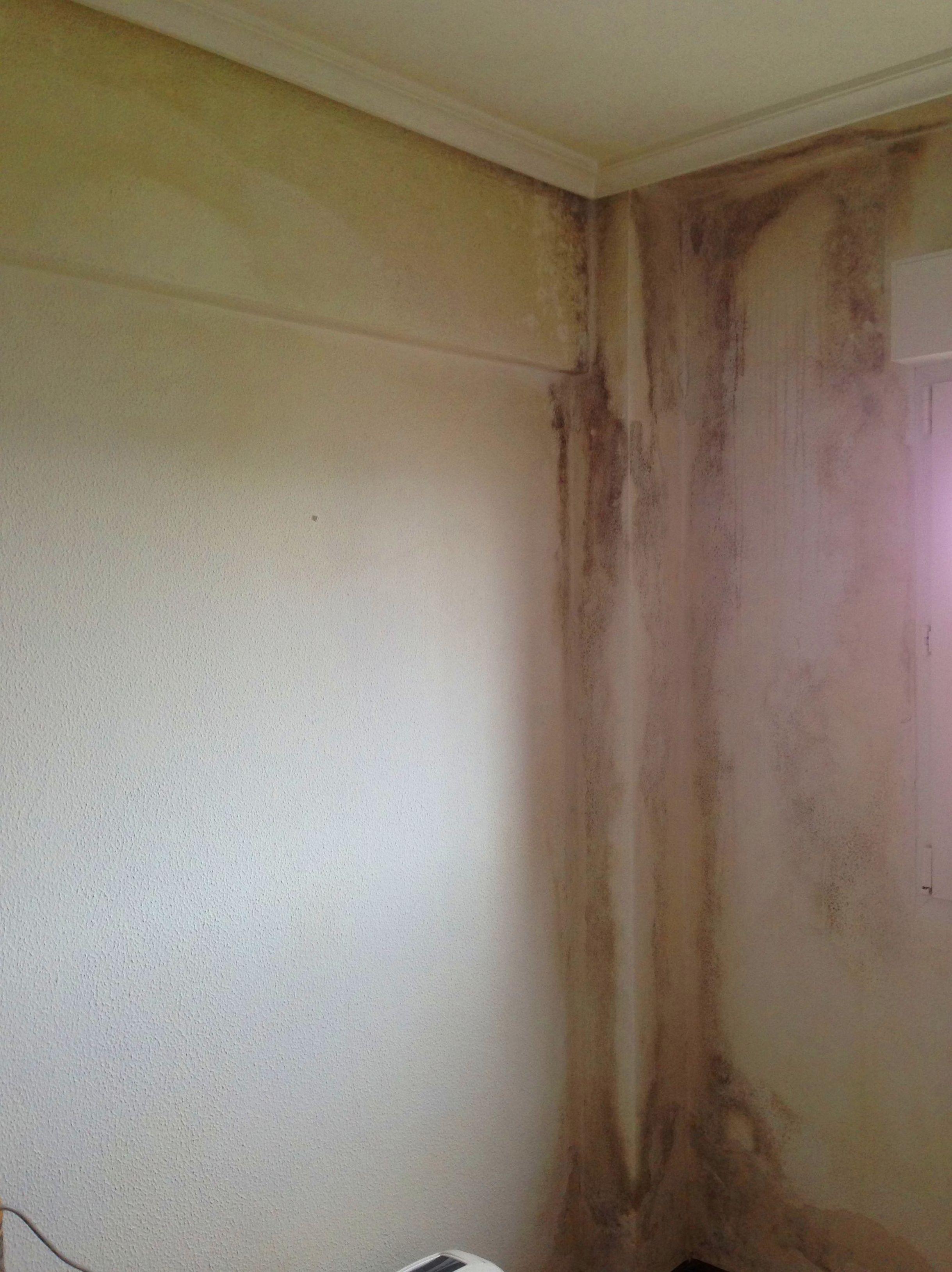 Solución de problemas de humedad y codesación en viviendas Santander