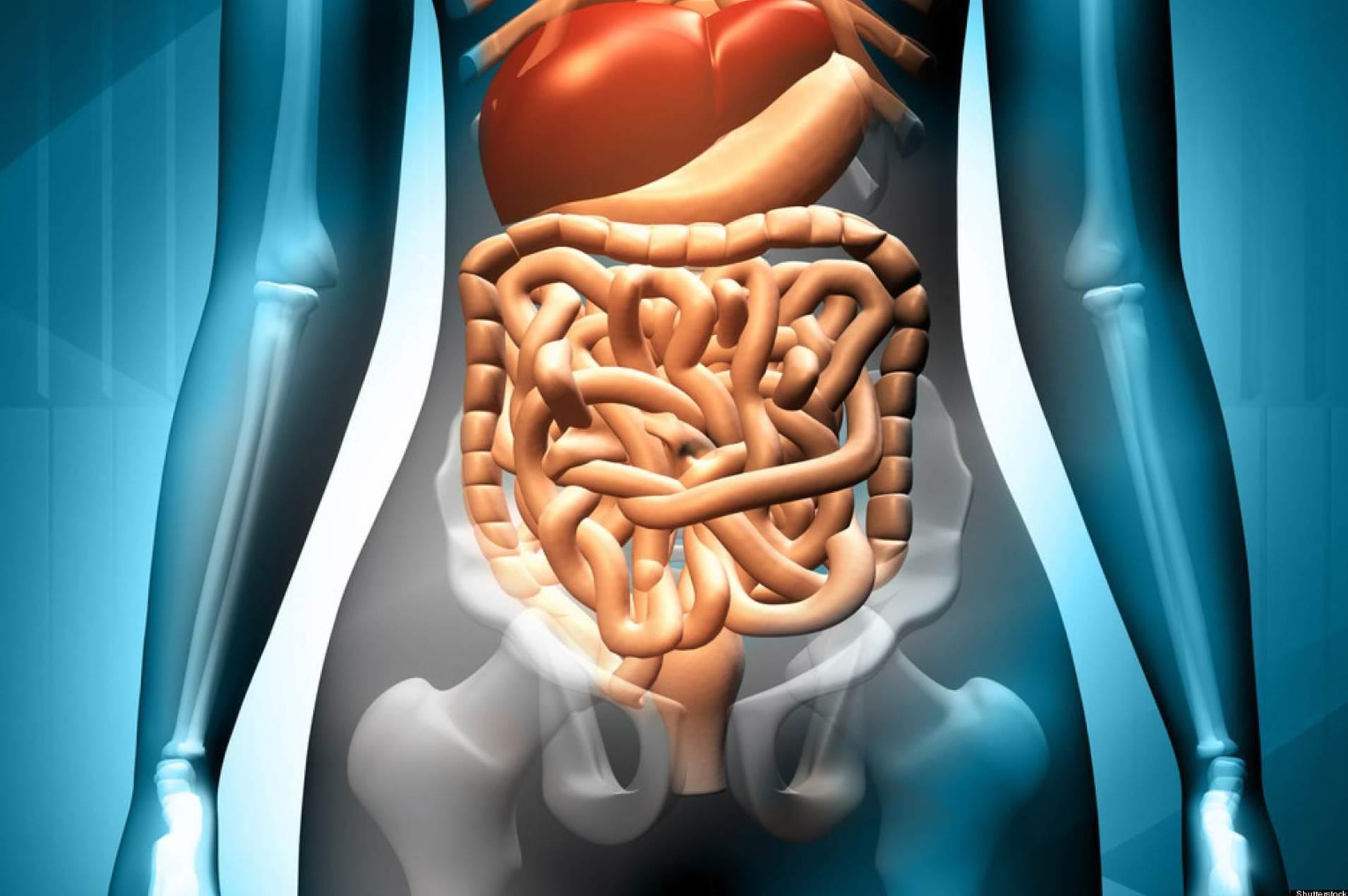 especialistas en aparato digestivo Reus|Prats  alonso
