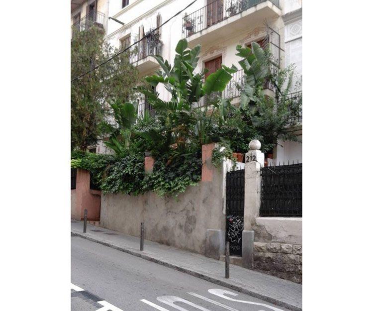 Foto 57 de Diseño de jardines en Palmañola, Mallorca | Garden Home Mallorca
