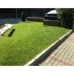 Mantenimiento de jardines Madrid Norte.