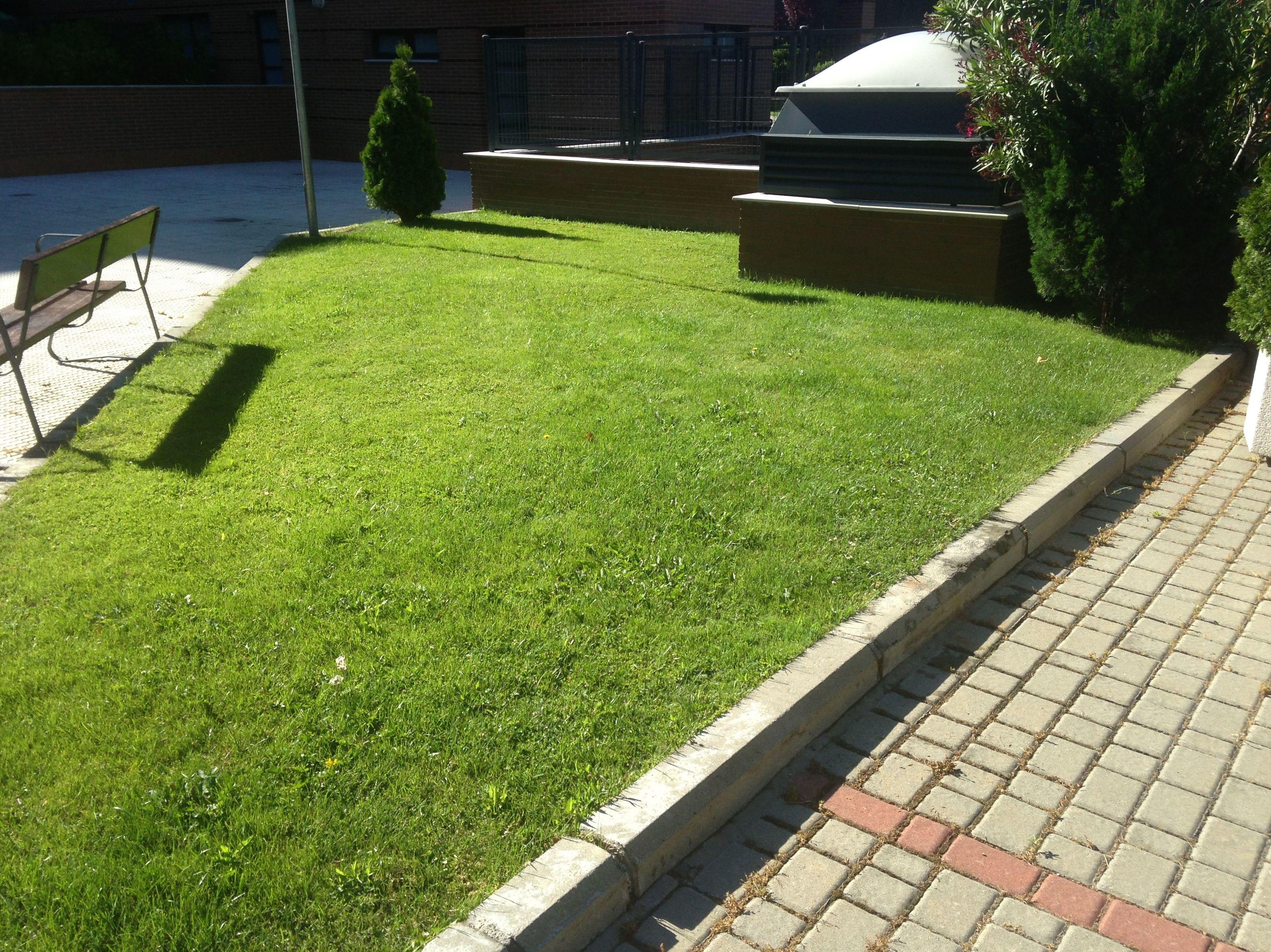 Empresa de jardinería en Tres Cantos
