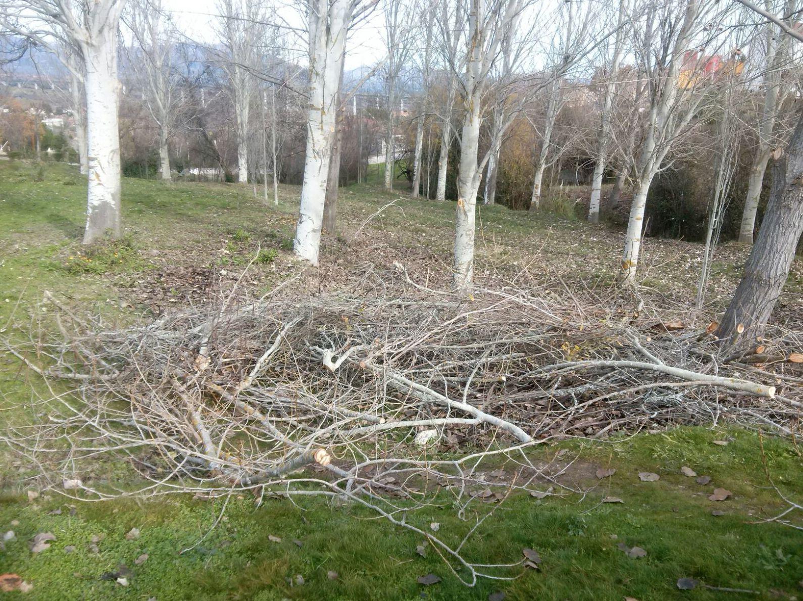 Limpieza de parques y jardines