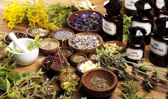 Naturopatía: Servicios de Vital S&B