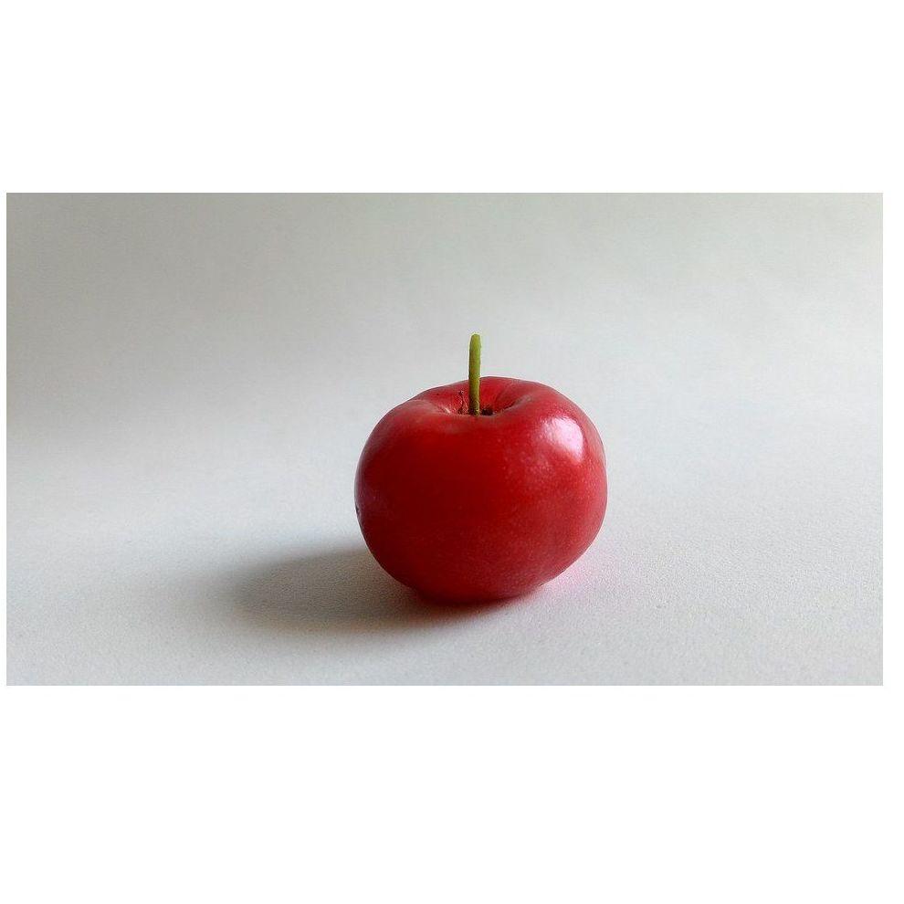 Acerola: Combinados de Guarapito