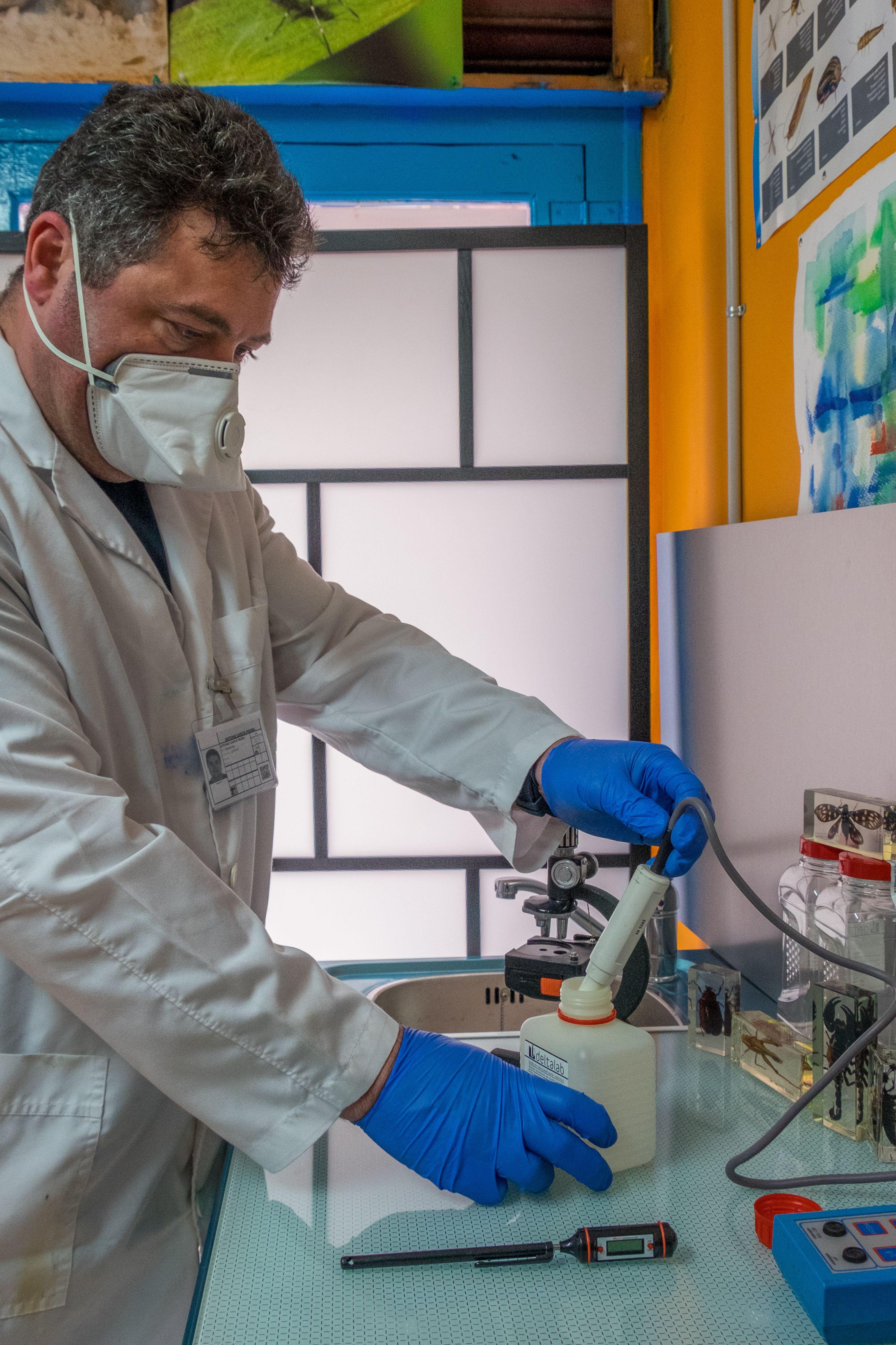 En AGP Sanidad Ambiental atajamos cualquier tipo de plaga utilizando el material necesario
