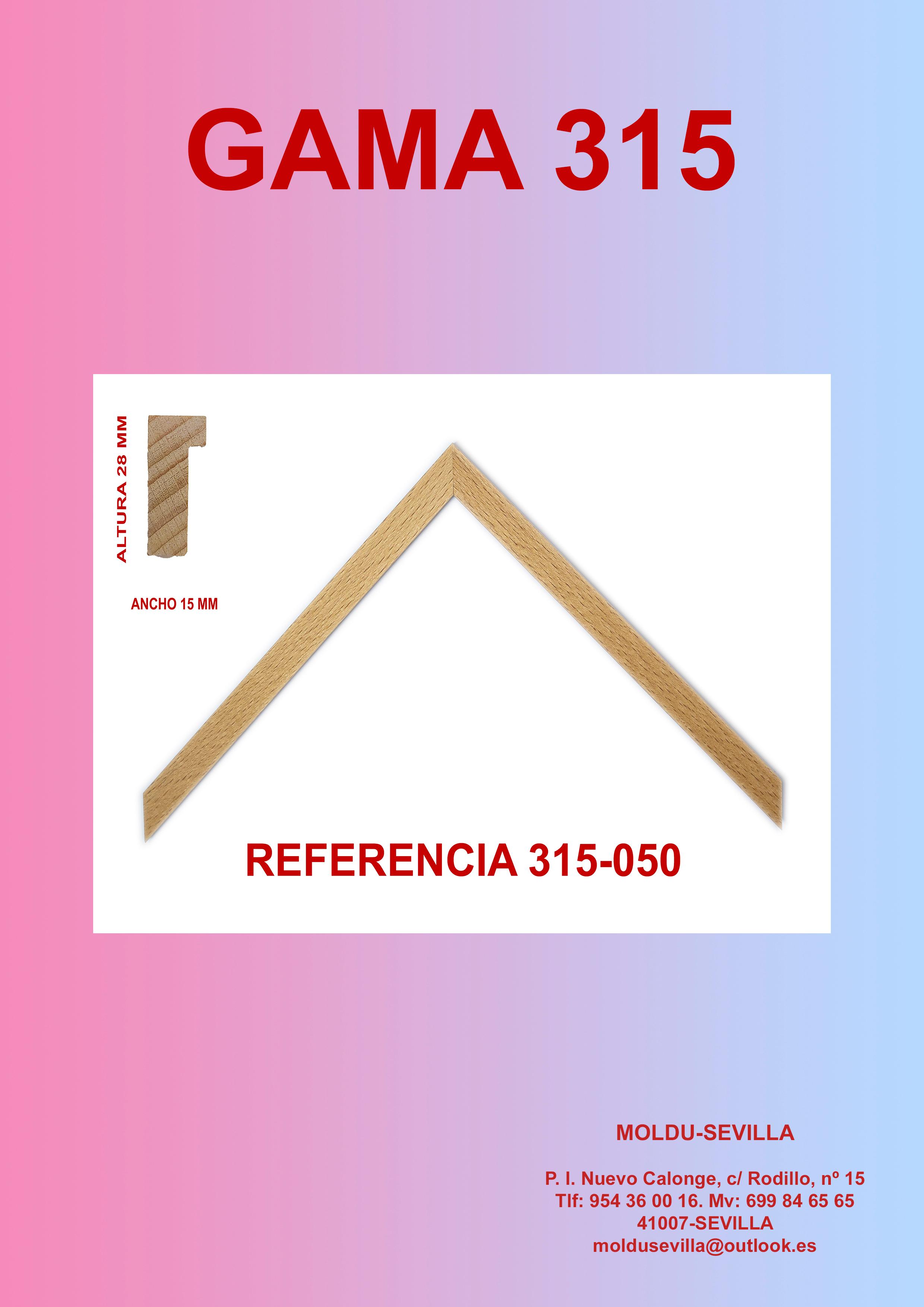 FOLLETO 315.jpg