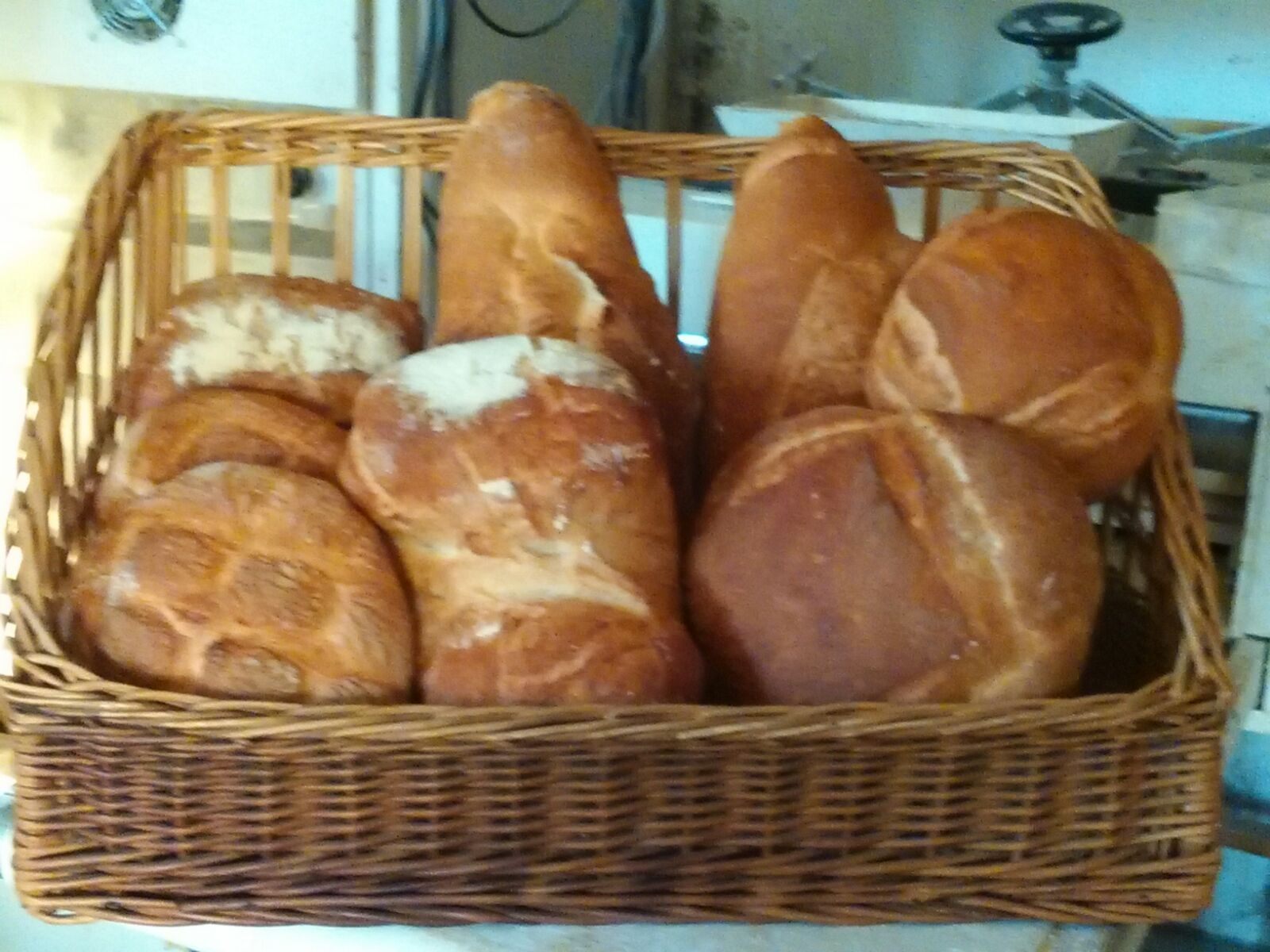 Panadería en Colungo