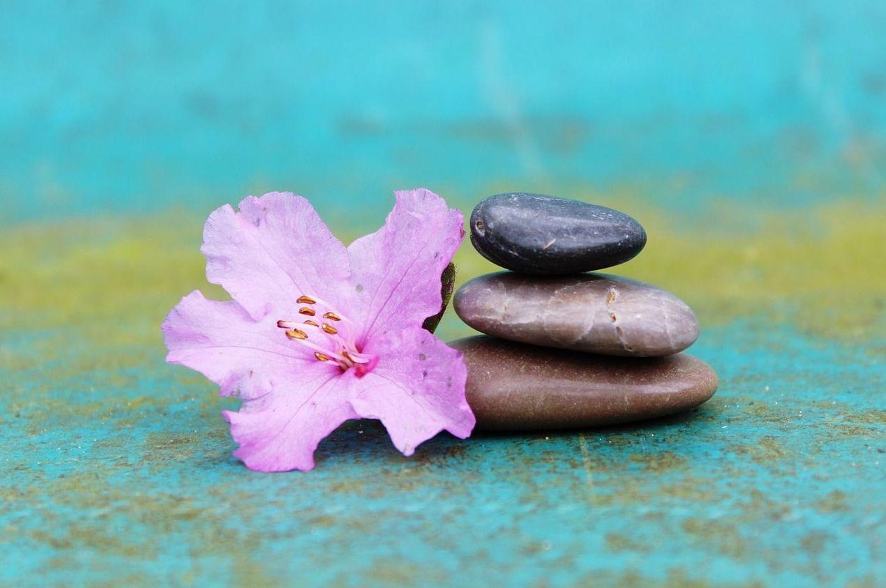 Tratamientos servicio a domicilio. Tratments in home service.: Terapias y masajes de Joan Serra Quiromasajista