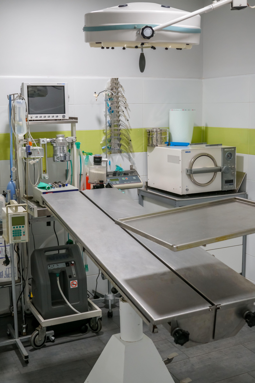 Foto 7 de Veterinarios en Fuenlabrada   Clínica Veterinaria Parque de los Estados