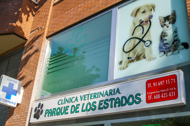 Foto 1 de Veterinarios en Fuenlabrada | Clínica Veterinaria Parque de los Estados