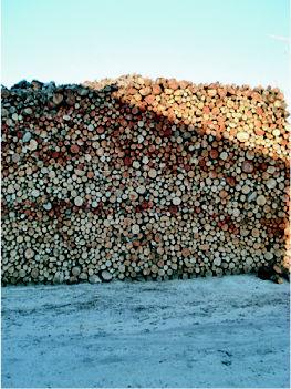 Foto 3 de Carbones y leña en Móstoles | El Almacén de Gil