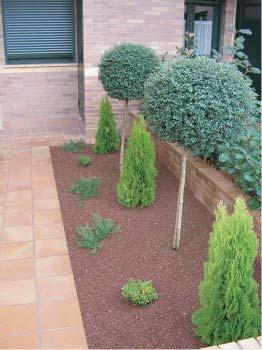Foto 4 de Jardines (diseño y mantenimiento) en Oviedo | Jardines del Picón