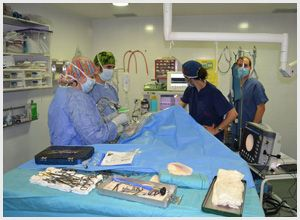 Clínica veterinaria con quirófano en Humanes de Madrid