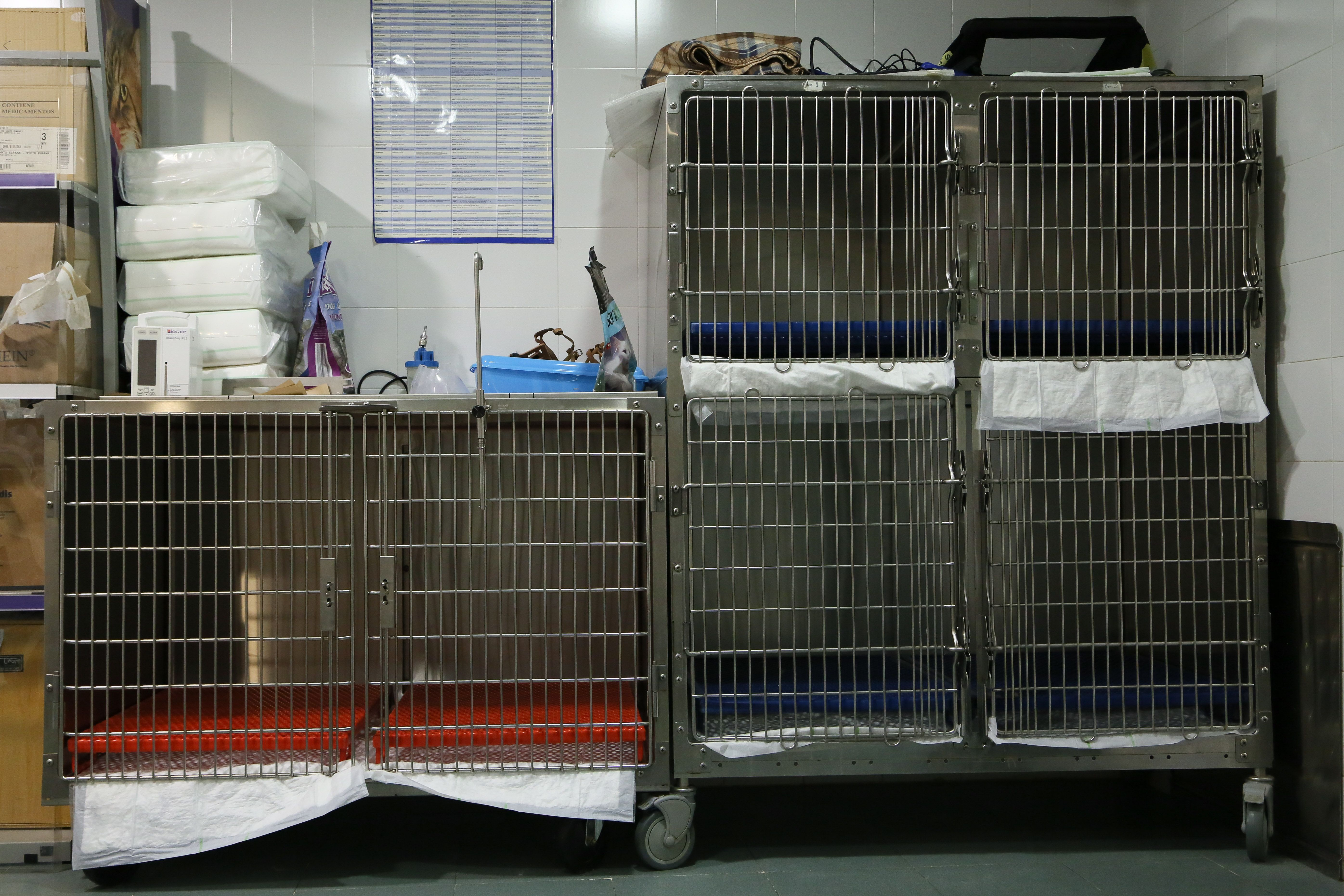 Foto 3 de Veterinarios en Humanes de Madrid | Clínica Veterinaria San Antón