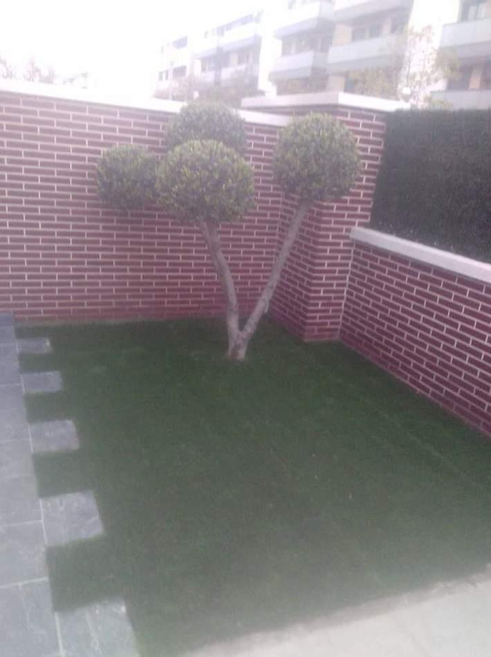 Foto 9 de Diseño y mantenimiento de jardines en  | SalvaJardin