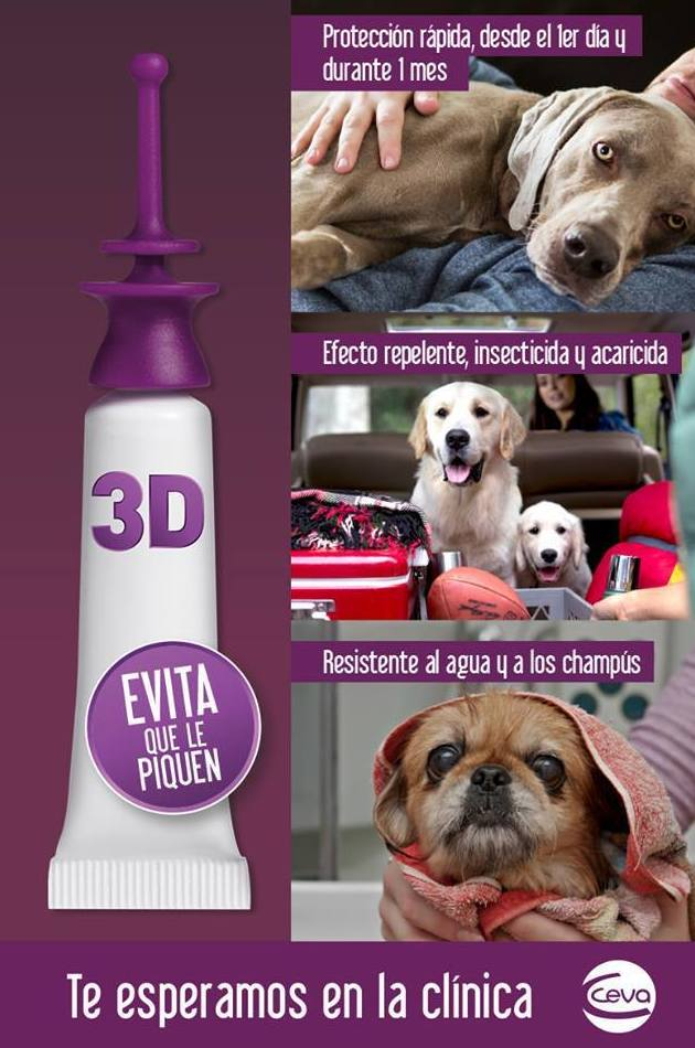 No te olvides de proteger a tu mejor amigo frente a los parásitos externos. Si pasas por la clínica te informaremos sobre el método más apropiado para tu mascota.