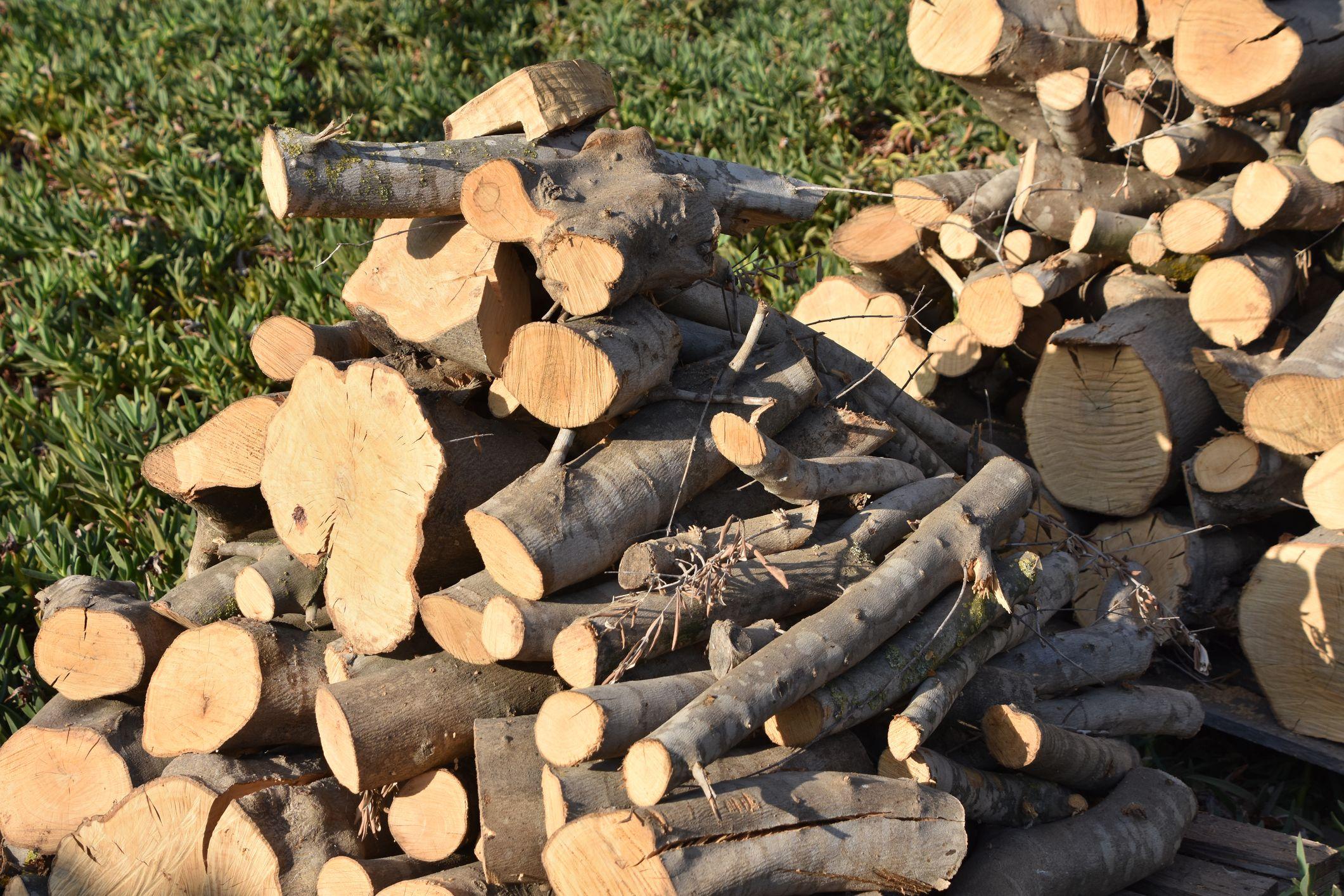 Venta de madera seca para encender