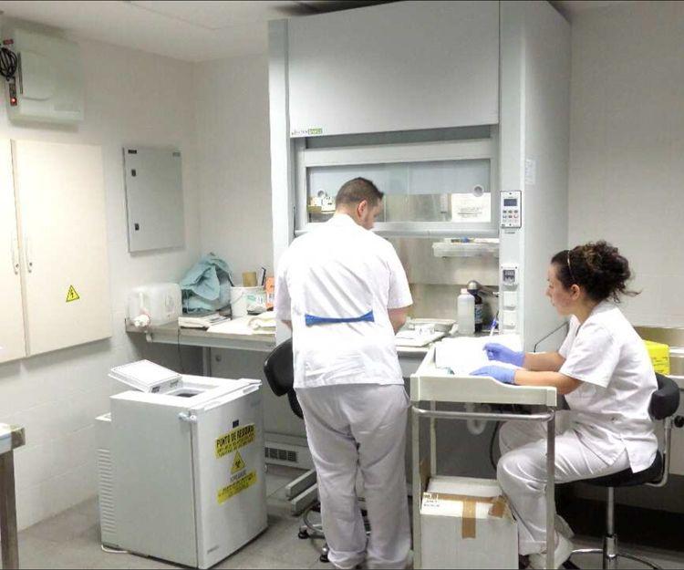 Creación de espacios libres de patógenos.