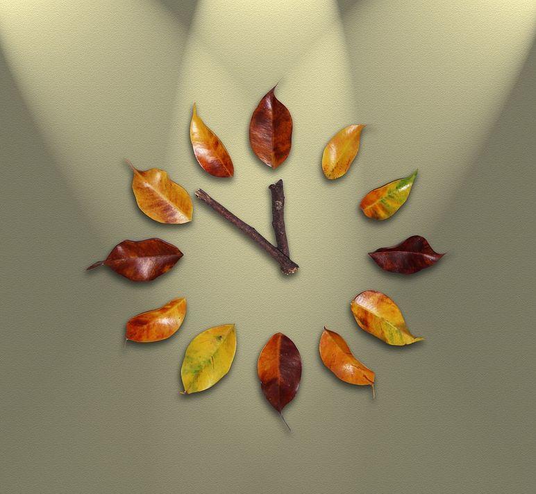 Horarios y calendario: Servicios de E.I. Cuatro Pecas de Colores