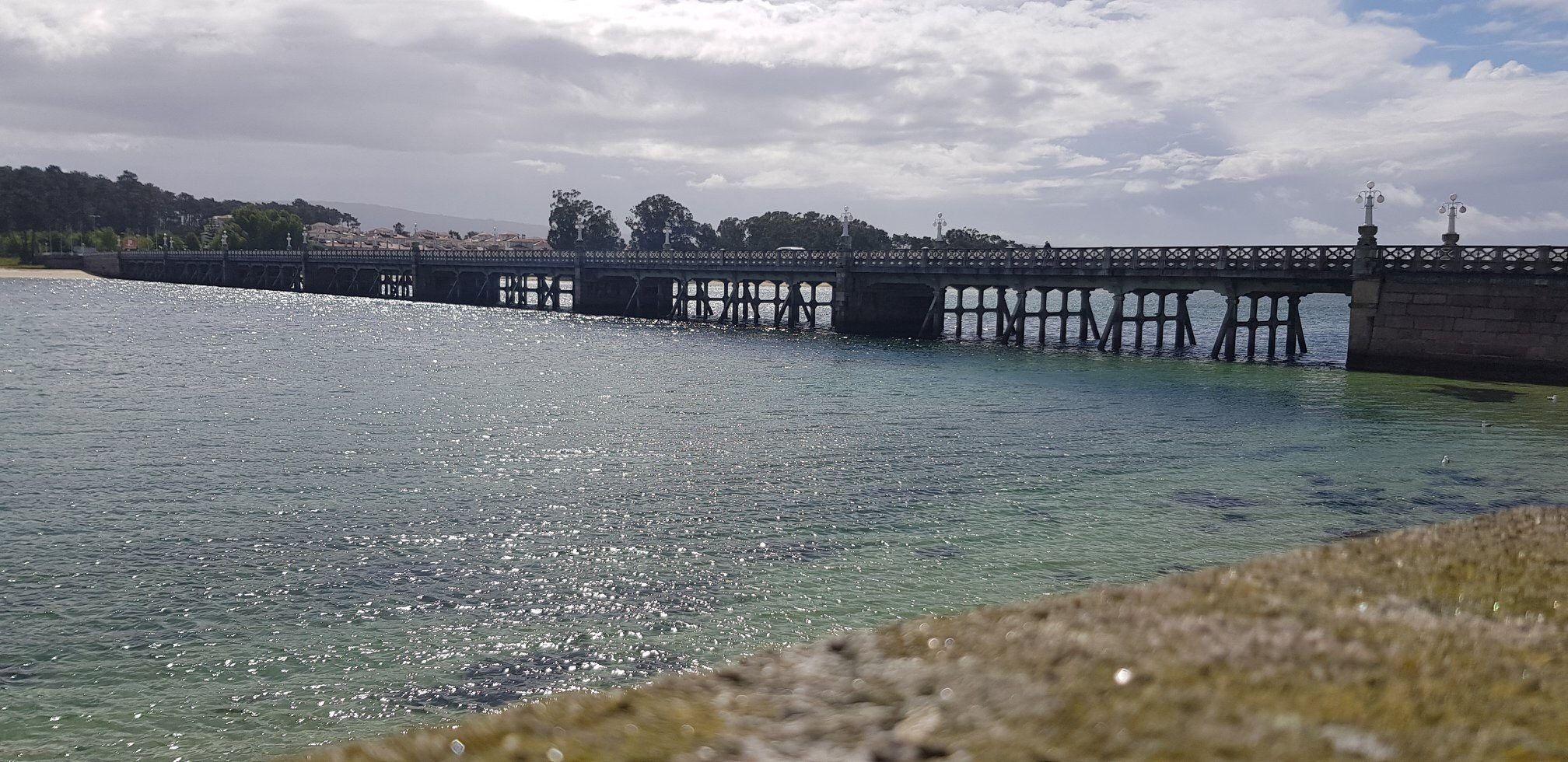 Marisco gallego y pescado en O Grove
