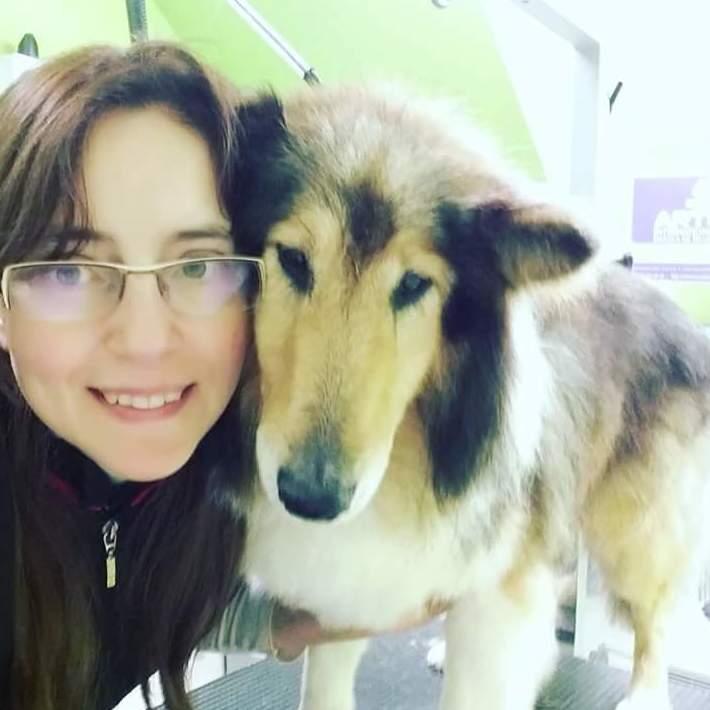 Foto 7 de Academias de peluquería canina y felina en Carballo | Perruqueria Canina Milú