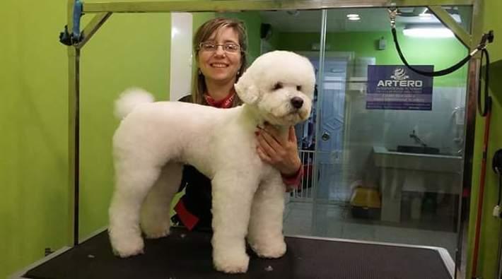 Foto 17 de Academias de peluquería canina y felina en Carballo | Perruqueria Canina Milú