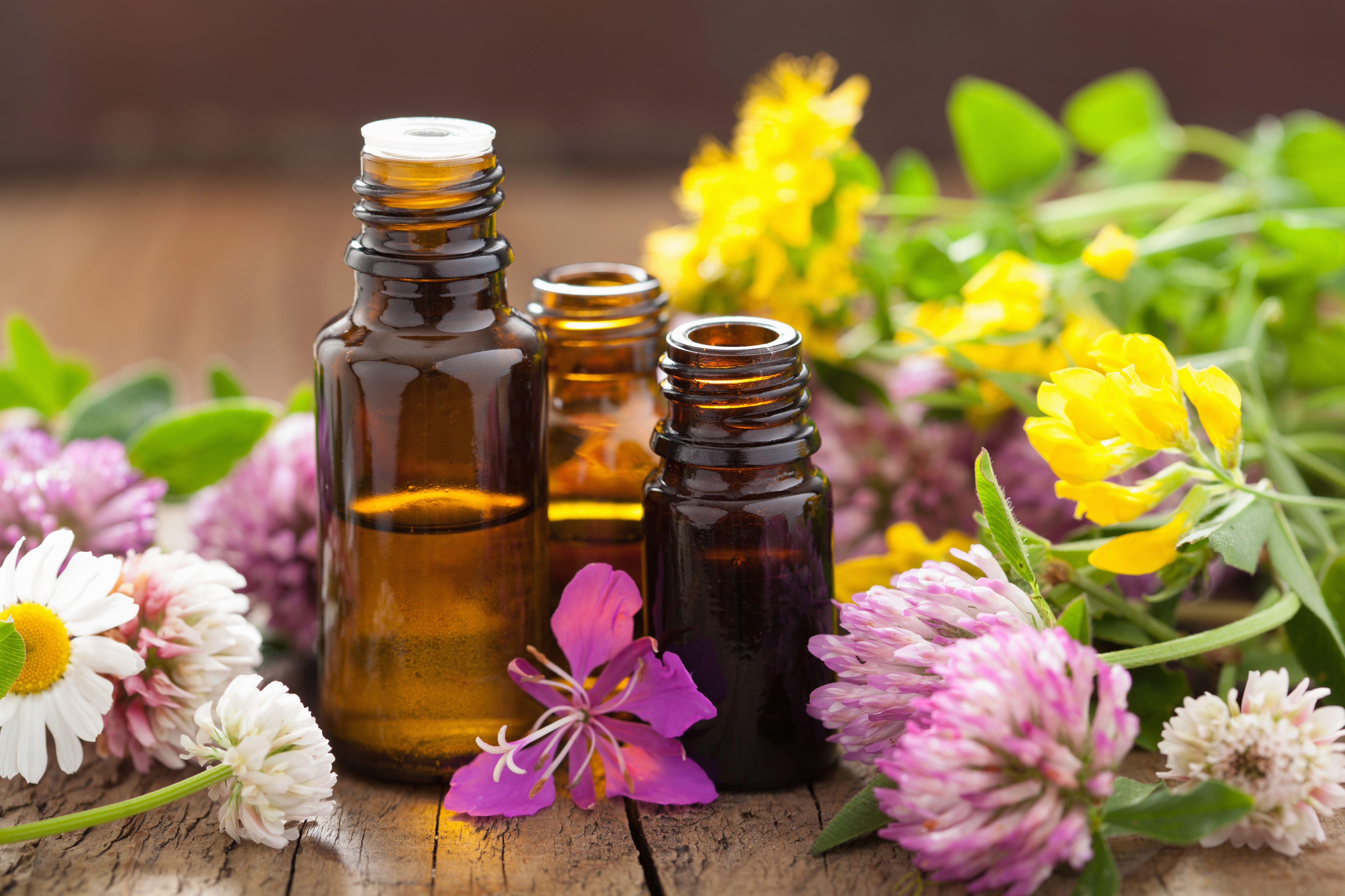 Tratamientos curativos con plantas: Tratamientos of Médico Acupuntor Rosa María Perez