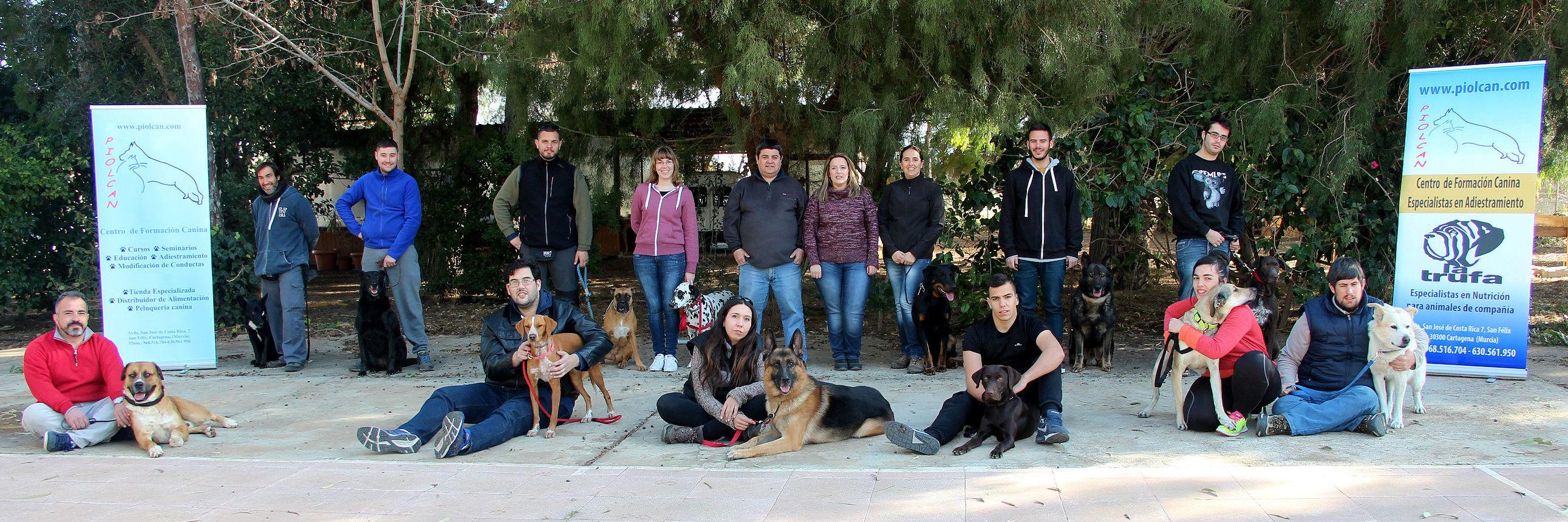 Foto 4 de Adiestramiento canino en Cartagena | Piolcan Adiestramiento Canino y Centro de formación