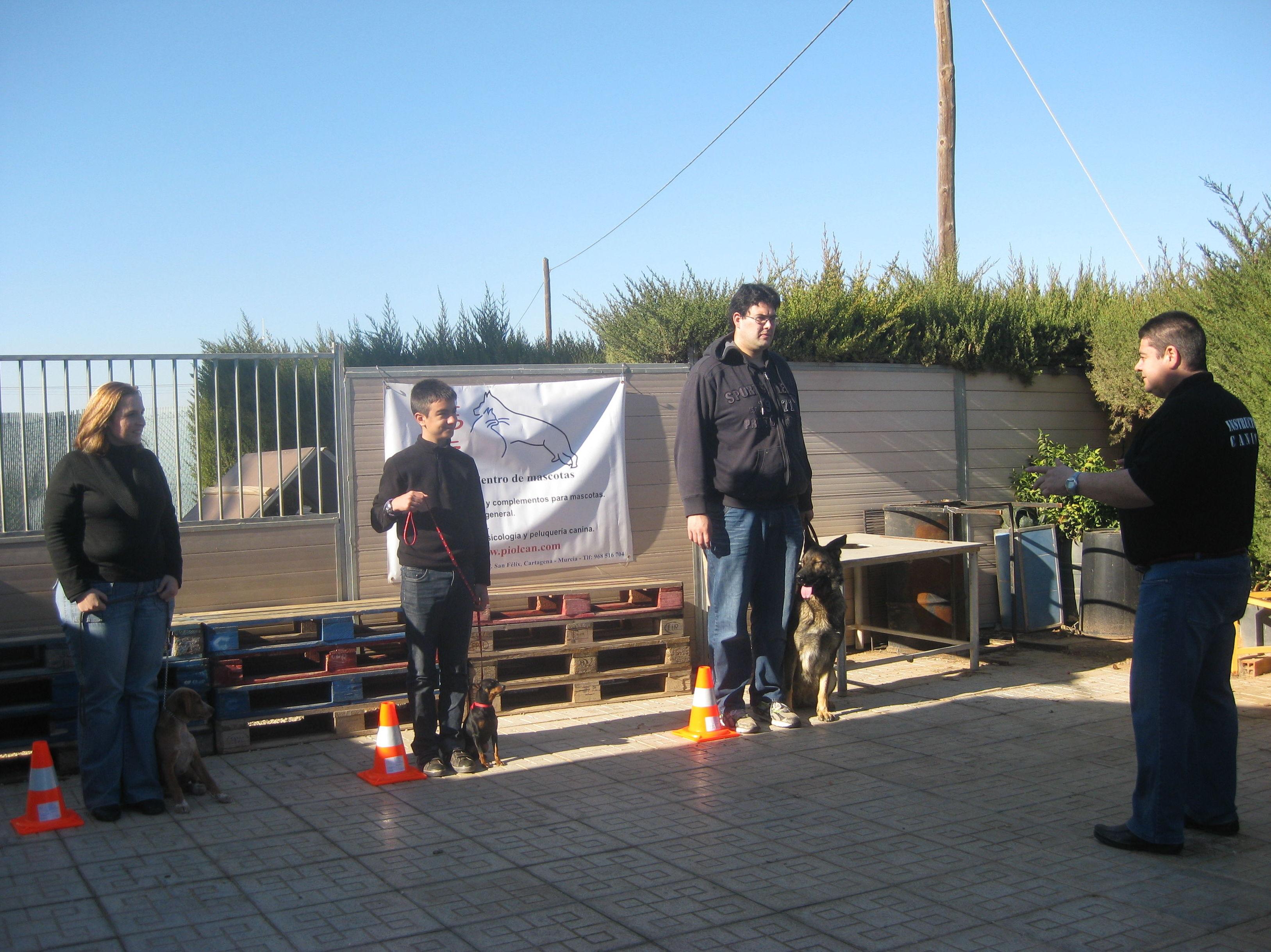Foto 3 de Adiestramiento canino en Cartagena | Piolcan Adiestramiento Canino y Centro de formación