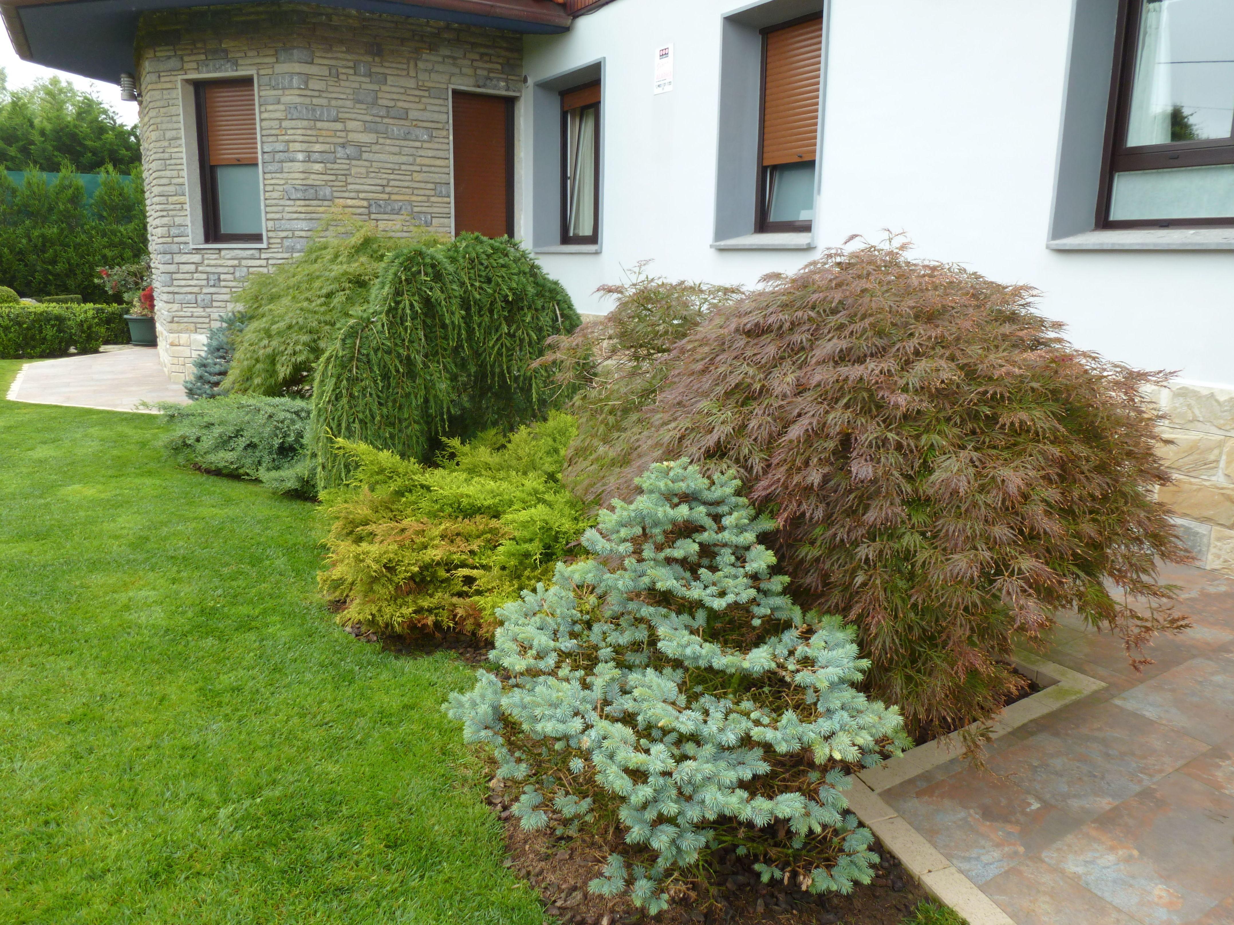 Foto 36 de Diseño y mantenimiento de jardines en Muskiz | Jardinería IGLE-MAN