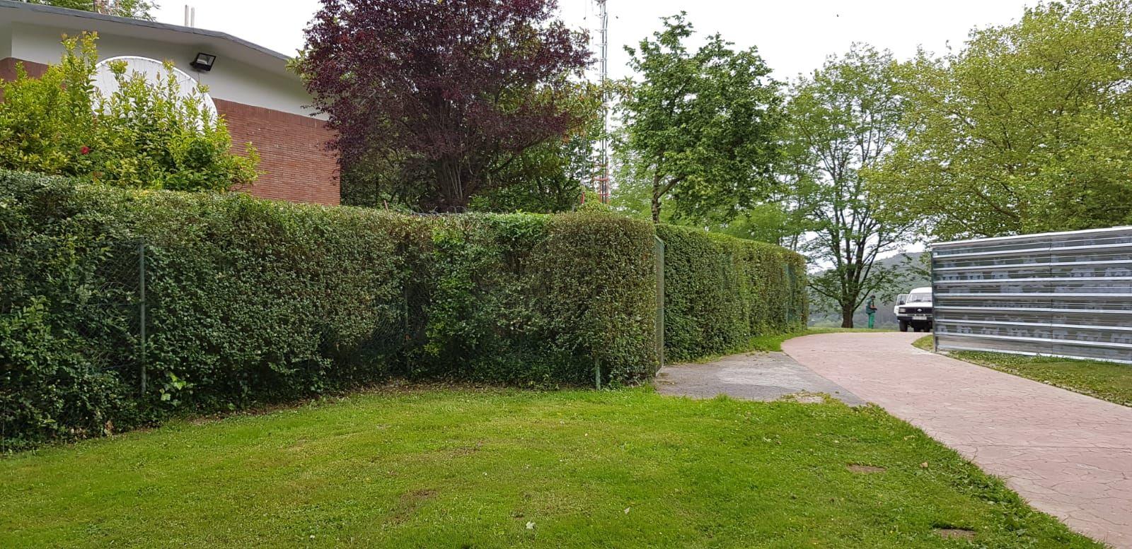 Poda de arbustos en Bizkaia