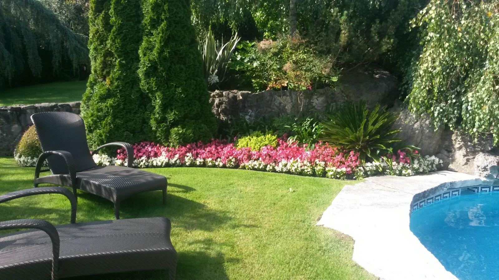 Foto 4 de Diseño y mantenimiento de jardines en Muskiz | Jardinería IGLE-MAN