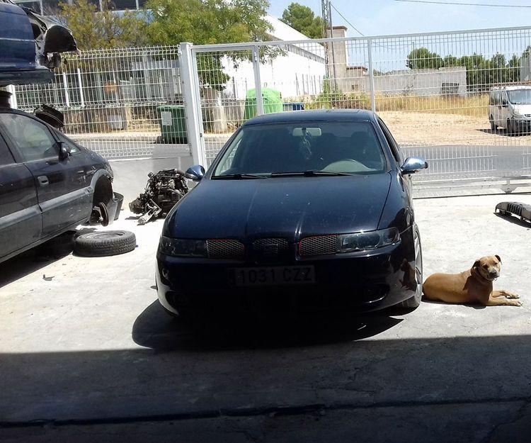 Baja de vehículos en Murcia