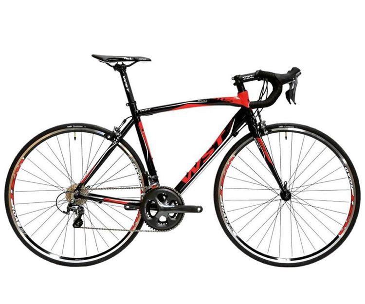 Diversos modelos de bicicletas