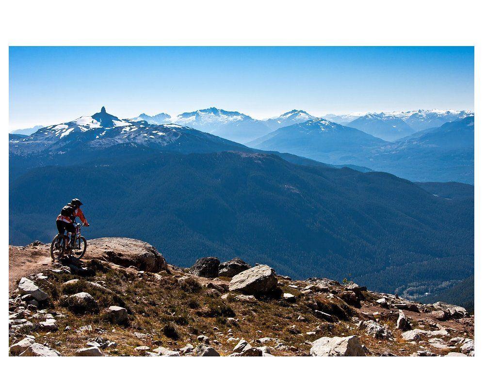 Bicicletas de montaña: Bicicletas de Bicicletas Goicontini