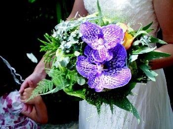 Foto 16 de Floristerías en  | Flores Benedé